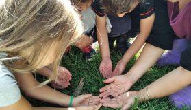 Educación Viva en la Naturaleza: cuando la Pachamama se vuelve Maestra